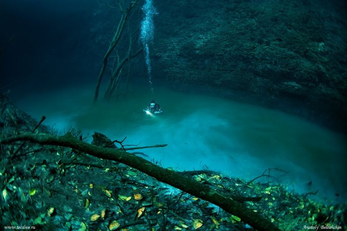 Foto dan video sungai di bawah laut meksiko